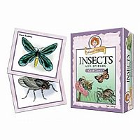 Professor Noggins Insects And Spiders