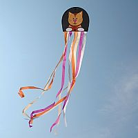 Whiskers Octopus Kite