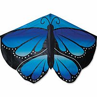 Cool Blue Butterfly Kite