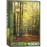 Forest Path - 1000pc. Puzzle