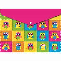 Colour Owls - Poly Folder