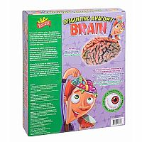 Scientific Explorer Disgusting Anatomy Brain