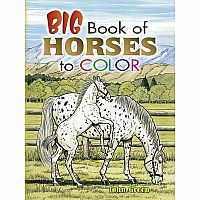 Big Book of Horses to Colour