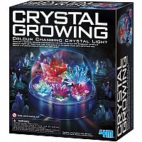 Crystal Growing Light-Up Display